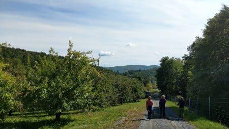 Scott Farm Orchard