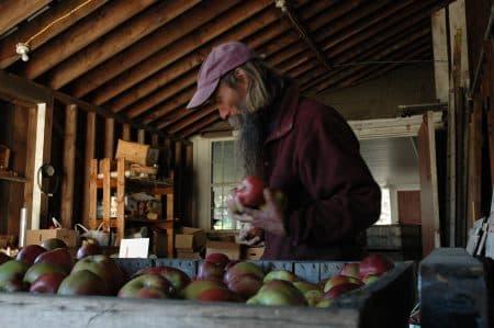 Zeke and appls