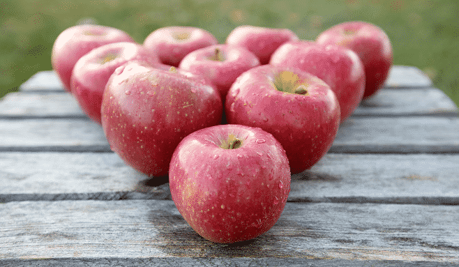 Are new Honeycrisp crosses solving any problems for Northeast growers?