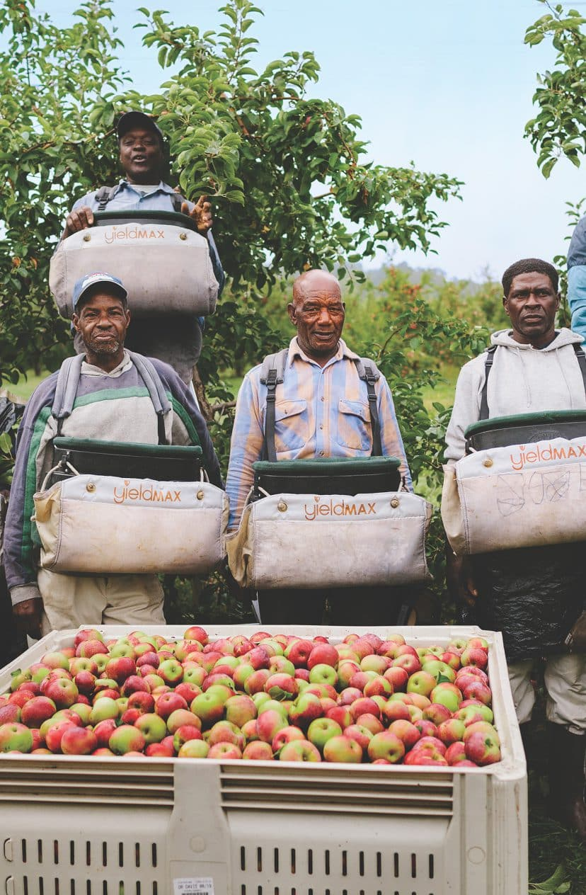 Behind the Scenes of Local - Farm Labor in the Northeast