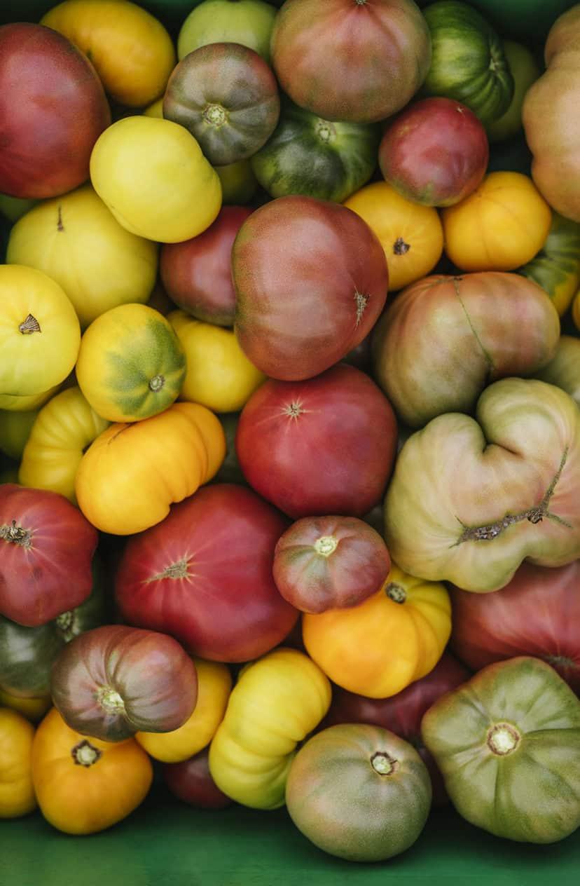 Tomatoes - Heirloom