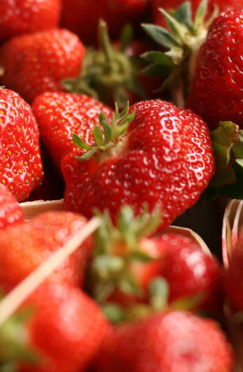 New season brings new opportunity – and strawberries!